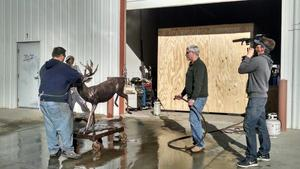 Video about bronze sculpture production with Steve LeBlanc, sculptor and Carey Hosterman of Rocky Mountain Bronze Shop in Loveland Colorado